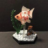 Kaiyodo Wing Mau Beam Pearl Scale Goldfish Fish Figure Model Diorama