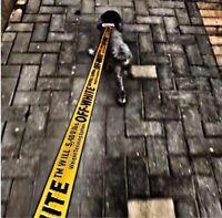 Dog Leash Fashion Nylon Adjustable Off White Print Traction Rope Harness Dog