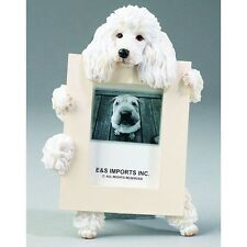 Poodle White Dog Picture Photo Frame