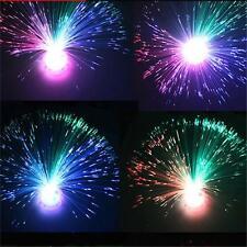 LED Couleur Changeante Fibre Optique Lampe Veilleuse Plein de Maison Fête Déco G