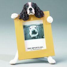 Springer Spaniel Picture Frame #42