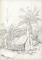 TREES & HUTS CEYLON - SRI LANKA Antique Pencil Drawing c1920