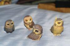 4 Pot Bellys Owls Mint