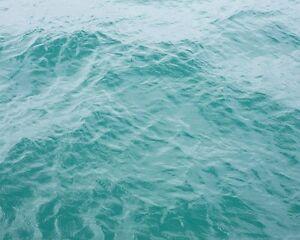 25l FRESH RO WATER FOR MARINE REEF TROPICAL WATER FISH AQUARIUM