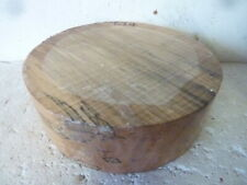 spalted beech bowl blank.....woodturning #694