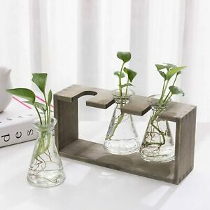 Rustic 3 Tapered-Shaped Glass Beaker Flower Display Vases w/ Grey Wood Stand