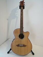 Lindo Guitars Dragon Electro Acoustic Guitar in Near Mint Condition