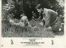 BRIGITTE BARDOT LES BIJOUTIERS DU CLAIR DE LUNE 1958 VINTAGE PHOTO ORIGINAL #1