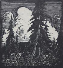 HERBERT PULLINGER-PAFA/New Hope Modernist-Hand Signed LIM.ED Woodblock-Mountain