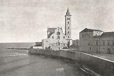 D0702 Trani - Cattedrale e Campanile visti dal Castello - Stampa - 1929 print