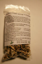 1 Oz (Apx 100) PKM1 Moringa Oleifera Seeds - US Customs Cleared!
