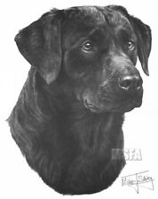 Black Labrador Large Superb Quality Giclee Print by Mike Sibley (Brand New)