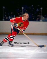 NHL 1960's Chicago Black Hawks Bobby Hull Golden Jet Color  8 X 10 Photo Picture
