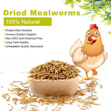 New listing 11Lbs Bulk Dried Mealworms Organic Meal Worms Treats for Chicken Wild Birds Feed