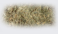Lemongrass Leaves Dried Herb 4oz Cooking Medicine Skin Aromatherapy Cosmetics