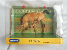 Breyer Buttercup Appaloosa Scratching Foal, NRFB