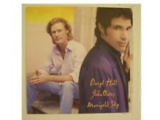 Daryl Hall and John Oates Poster Flat &
