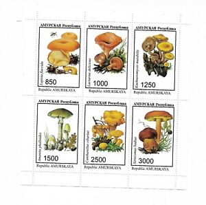 Mushrooms Mini Sheet Mint NH Rep of Amurskaya Lot 1