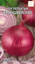graines d'oignon  Braunschweine - 250 graines