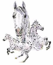 Appaloosa Trio Horse HEAT PRESS TRANSFER PRINT for Shirt Sweatshirt Fabric 245e