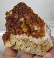 5 47cm South Carolina Scheletro Quarzo Cristallo Cluster Esemplare 90.00mm