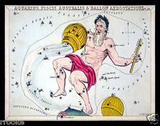 Aquarius January February Constellation ZODIAC Chart ASTRONOMY Astrology Print
