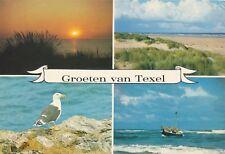 alte AK Grüße aus Texel - 4 Ansichten, Niederlande gelaufen Ansichtskarte B010h