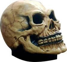 Latex Mask: Junior Skull Head