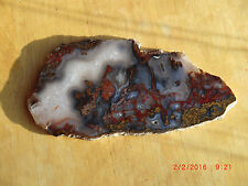 Mottled Agate Polished for Display