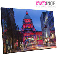 SC982 belfast city hall ireland Scenic Wall Art Picture Large Canvas Print