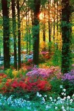 FLOWER FOREST - SCENIC POSTER 24x36 - NATURE LANDSCAPE BEAUTY 16946