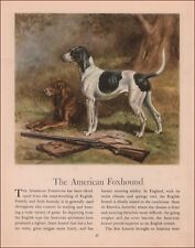 American Foxhound & Walker Hound Dogs by Edwin Megargee, vintage print 1942