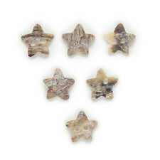 50pcs Star Shell Buttons Sewing Scrapbooking Gift Clothing Decor 13mm