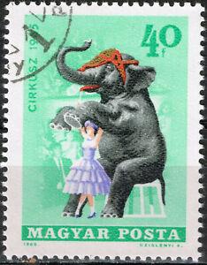 Hungary Fauna Wild African Animals Elephant 1965