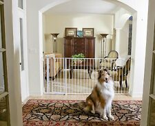 Carlson Extra Tall Maxi Walk-Thru Gate with Pet Door 1210HPW for dog