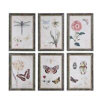 Wood Framed Nature Botanical Wall Art Decor Shabby Chic (sold individually)