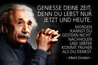 Albert Einstein Spruch 3 Blechschild Schild gewölbt Tin Sign 20 x 30 cm R0308