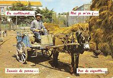 BR57582 folkore people ane donkey animals