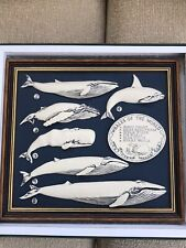 More details for 6 whales of the world framed picture killer hump fin blue sperm minke boxed