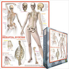 JIGSAW    EG60002014 	 Eurographics Puzzle 1000 Pc - The Skeletal System