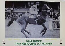 POLO PRINCE 1964 Melbourne Cup Print