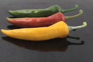 Realistic Artificial Faux Fake Peppers Food Vegetables Decor Props