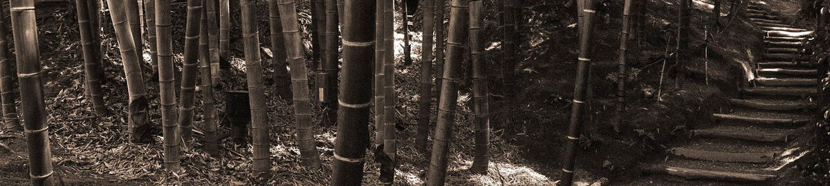 Bamboo Ragpickers