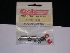 Vintage 1/10 Corally Pro10 Pivot Set PK Model Racing 75065