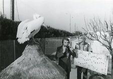 PATRICK JUVET 70s VINTAGE PHOTO ORIGINAL #3