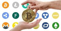 Portfolio Of Crypto Currency Domain Names For Sale - 1 Off Business Oppurtunity