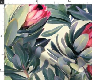 Painted Protea Floral Extra Large Tropical Spoonflower Fabric by the Yard