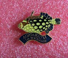 Pins Aquarium De La ROCHELLE Poisson Exotique