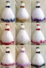 WHITE PURPLE TULLE FLOWER GIRL PARTY CHILDREN PAGEANT DRESS SIZE S M 2 4 6 8 12