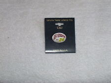 Vintage Nascars Jeff Gordon #24 Collector Pin